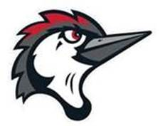 woodpeckers logo